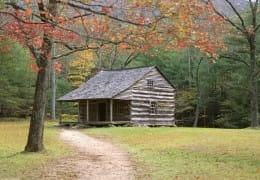 La renta de cabañas: una excelente forma para reconectarse con la naturaleza